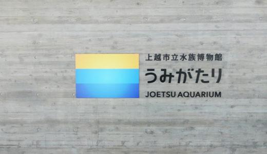 娘の水族館デビュー!上越市にある水族館【うみがたり】へ行ってきました!